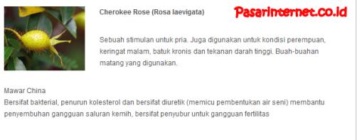 kandungan cherokee rose (rose laevigata) dalam phytochi