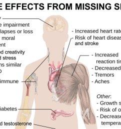 janie ho nyc gal on twitter 6 ways lackofsleep hurts you preventionmag body diagram on sleep deprivation sleeptips healthtips huge goal  [ 1200 x 884 Pixel ]