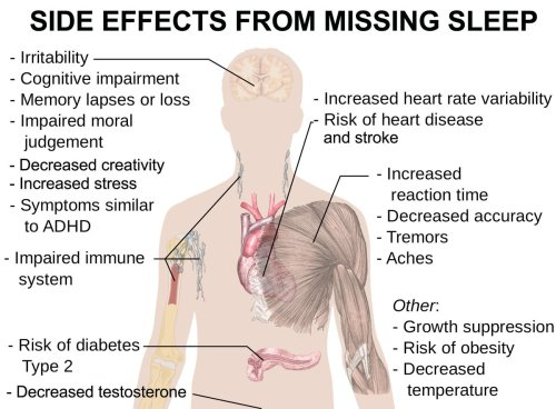 small resolution of janie ho nyc gal on twitter 6 ways lackofsleep hurts you preventionmag body diagram on sleep deprivation sleeptips healthtips huge goal