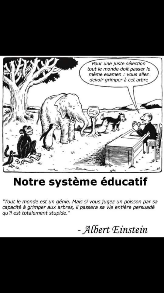 Tout Le Monde Est Un Génie : monde, génie, Benoit, Gourlet, Twitter:,