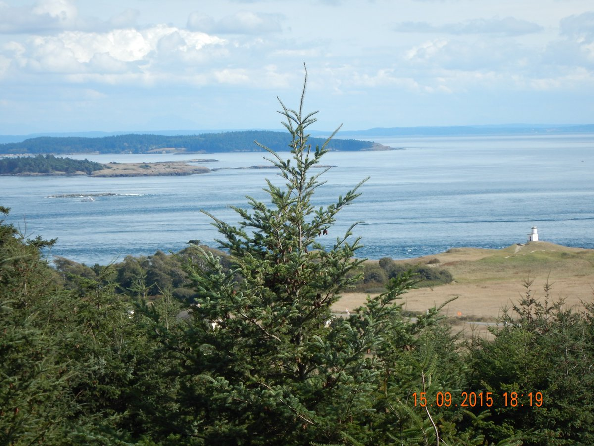 Cattle Point lighthouse & Lopez Island view. Red fox & dear nearby