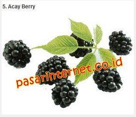 Acay Berry