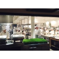 (The Mercer) Kitchen (@MercerKitchenNY) | Twitter