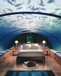 """Burak Caliskan Twitter """"hydropolis Underwater Hotel In"""