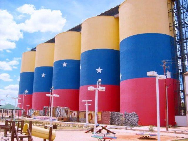 La bandera pintada más grande del mundo es venezolana