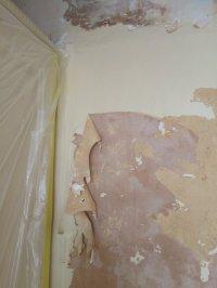 Painting Over Asbestos Artex Ceiling | Integralbook.com