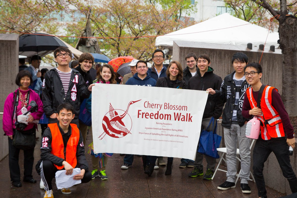 Image result for cherry blossom freedom walk