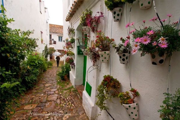 Castellar de la Frontera (https://twitter.com/andaluciaparais/status/721085670207434752/photo/1)