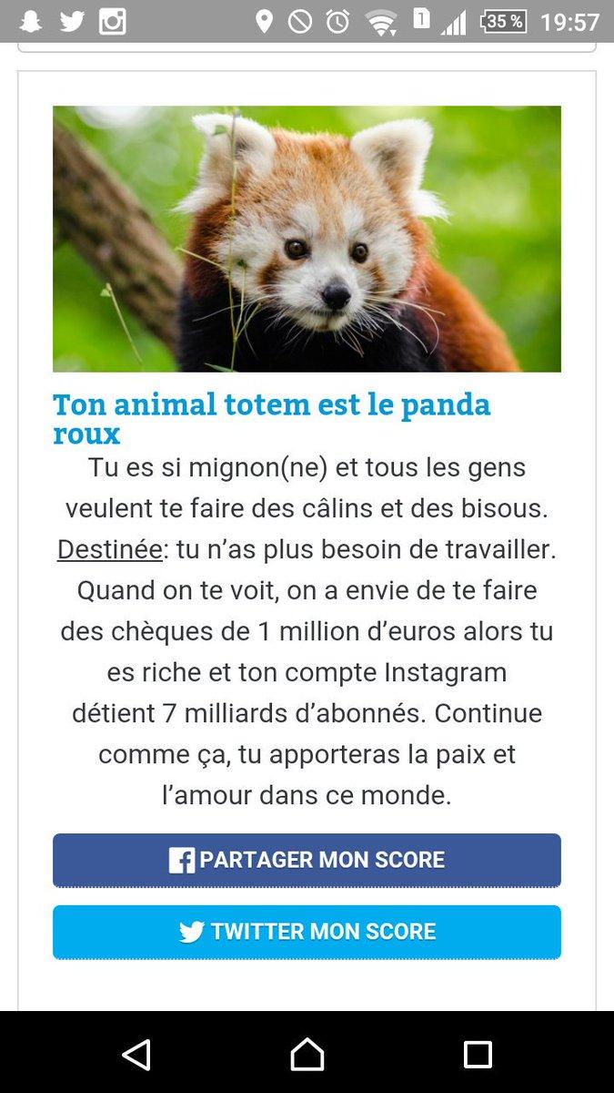 Quel Est Mon Animal Totem : animal, totem, Amélie, Twitter:,