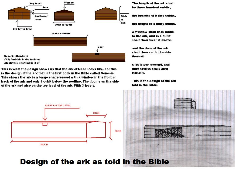 medium resolution of noah s ark found by leroy blevins sr real images of noah s ark contact info leroyblevins1 aol compic twitter com wa1nicdxw1