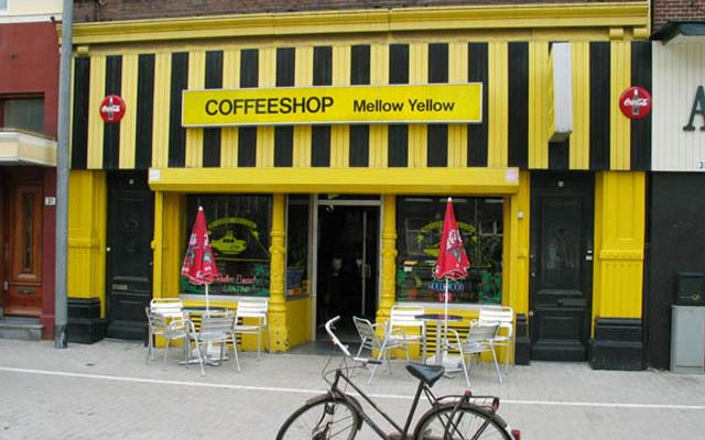 Amsterdam-Style Pot Cafes? What Consumption Rooms in Alaska Could Look Like