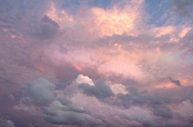 astrology ☄✨ on Twitter: Signs as soft pink/purple aesthetic // Taurus //