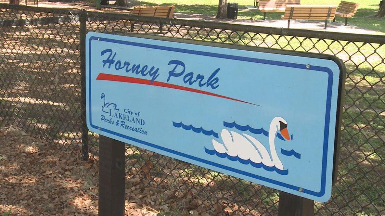 Should Polk have a Lake Horney?