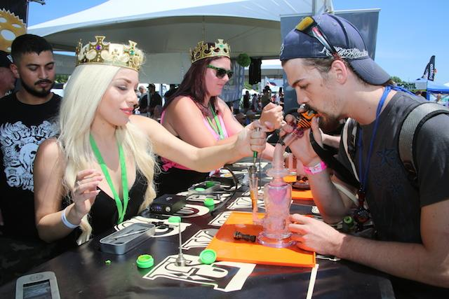 #WATCH 2016 Michigan Medical #CannabisCup: Highlights.
