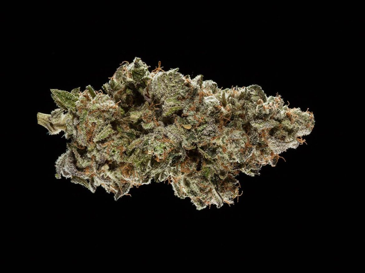 Presenting the winners of the 2016 Michigan Medical Cannabis Cup: Top 5 Hybrid Flowers.