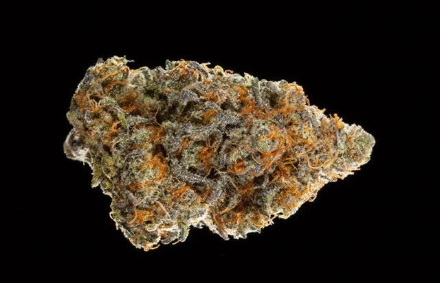 #WATCH the Hybrid Flower Entries In The 2016 NorCal Medical #CannabisCup this weekend!