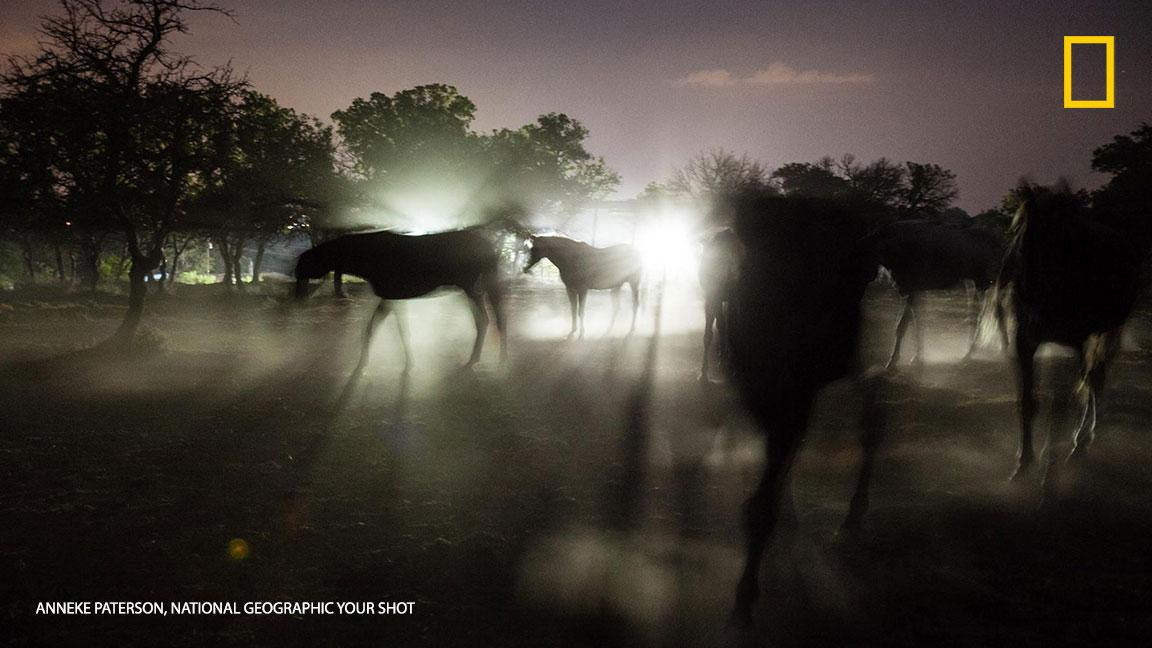 Peek through the lens of an Austin photographer & experience the city like never before: