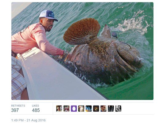 NBA player reels in nearly 400-lb Goliath grouper in Florida.  on.