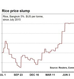 commsec price of rice has slumped by 8 rice is our third largest cereal grain export global oversupply tipped ausbiz  [ 1200 x 900 Pixel ]
