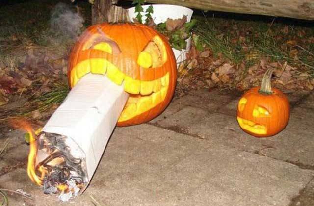 #READ Fall is in the air! Take it all in with the Stoner's Guide to Autumn.
