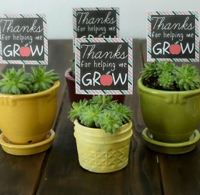 Teacher Gift Idea + Printable:teacher gift DIY