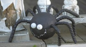 Get your spidey-senses tingling with a creepy-crawly Halloween DIY from Expert Bev Bell!