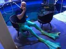 Silverton Mermaids Sc Twitter