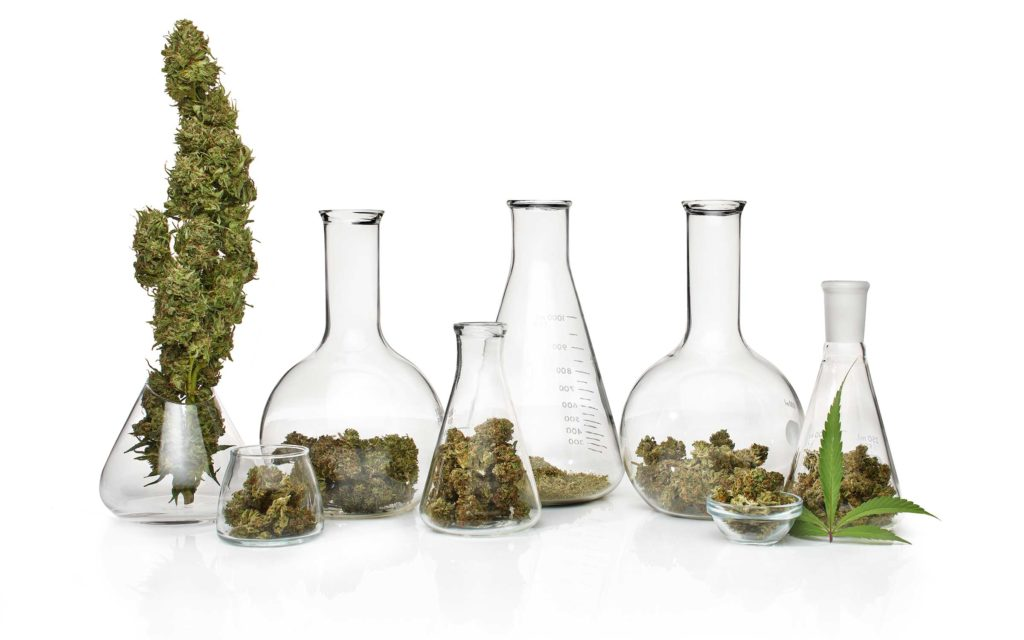 Research Hurdles: Take An Inside Look at the Burdens Imposed by Pot's Schedule I Status.