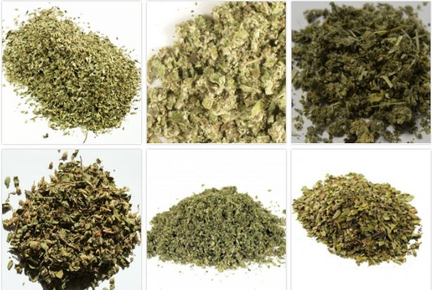 Try our totally fair #Quiz: Do you REALLY know what weed looks like?