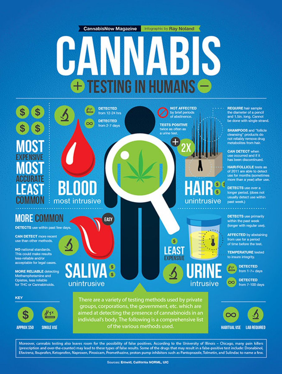 Breaking It Down. 6 Charts Every Pot Lover Needs.