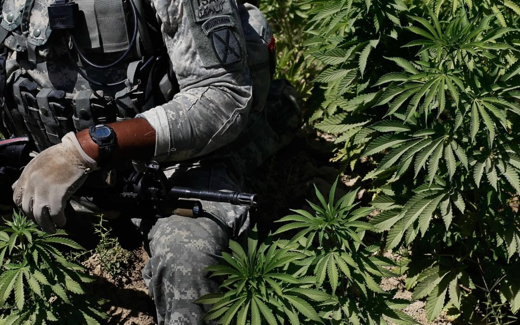 Central America: Tri-National Task Force Emerges to Fight Narco-Gang.