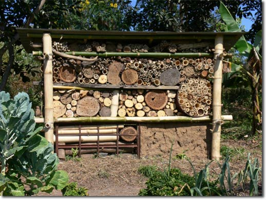 Grow Hack: How to Build an Insect Hotel to Avoid Toxic Pesticides.