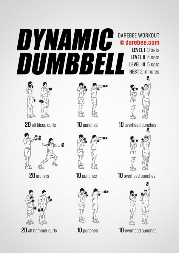DAREBEE on Twitter quotNEW Dynamic Dumbbell Workout https