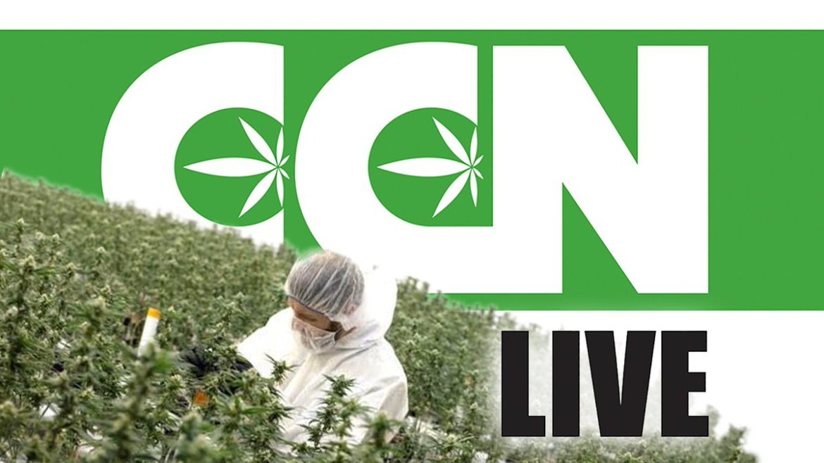 WATCH LIVE today @ 4PM PT Cannabis Culture News LIVE: Marijuana Task Force or Task Farce?