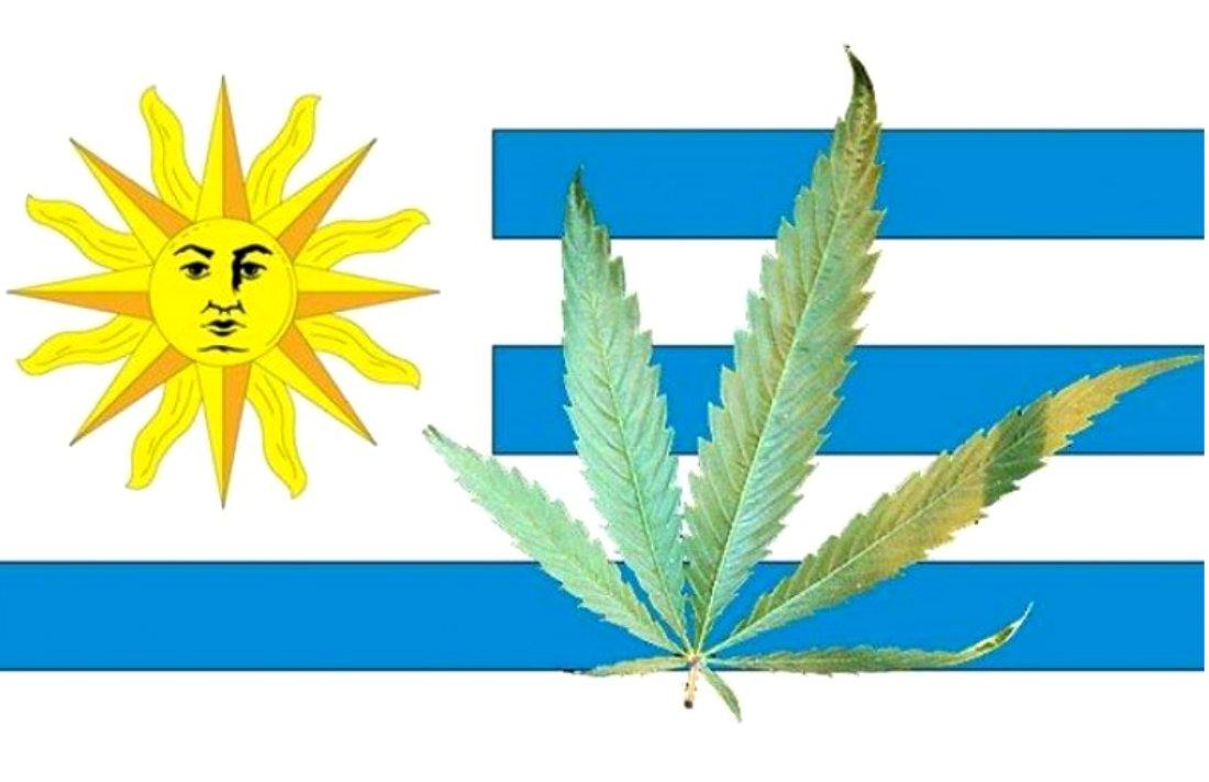 Uruguay to Have Marijuana Museum #museum #uruguay #history #education #culture #arts