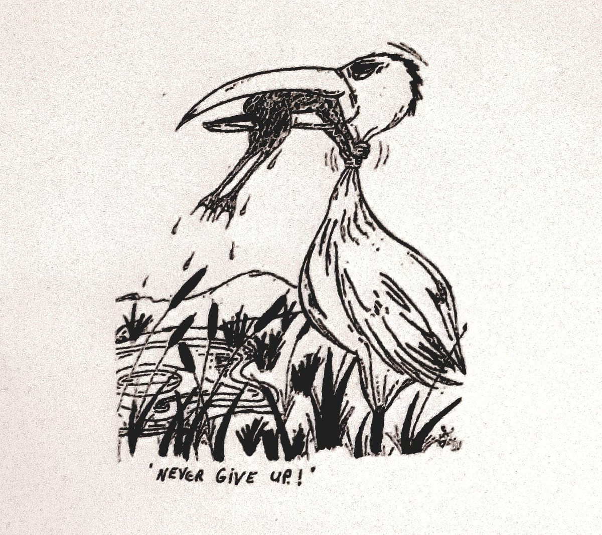 Don T Ever Give Up Frog And Crane