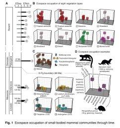 wilson kpg lab dig field school and stromberg lab [ 1159 x 1200 Pixel ]