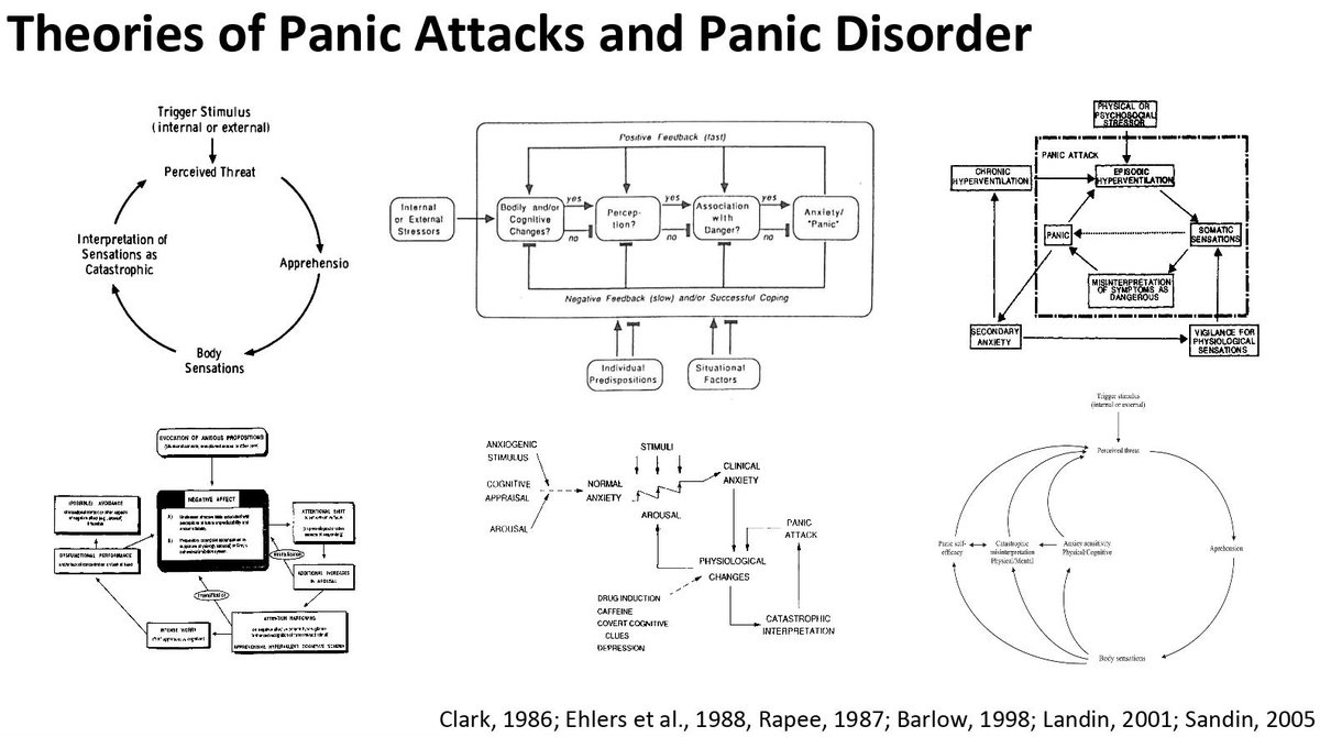 hight resolution of  literature on panic attacks disorders move network theory of mental disorders to next level by specifying precisely how panic disorder operates as