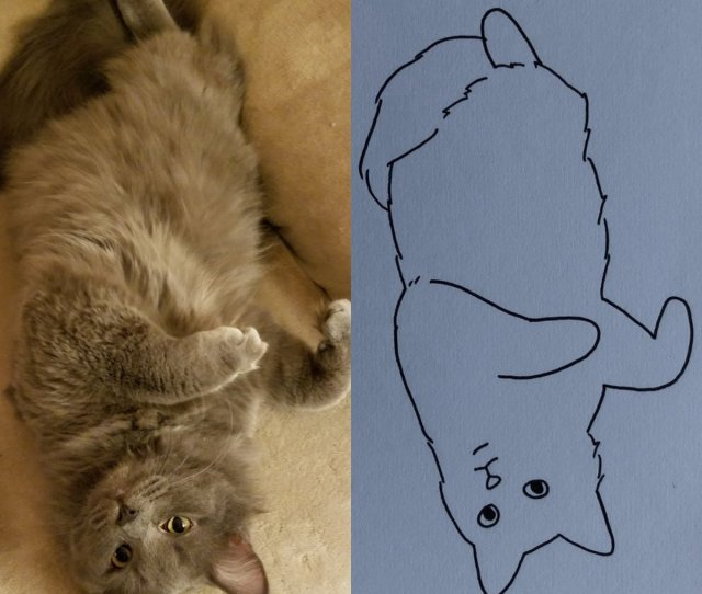 Poorly Drawn Cats