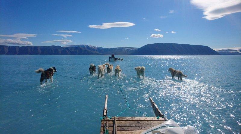 Grönland: Das Foto ist echt
