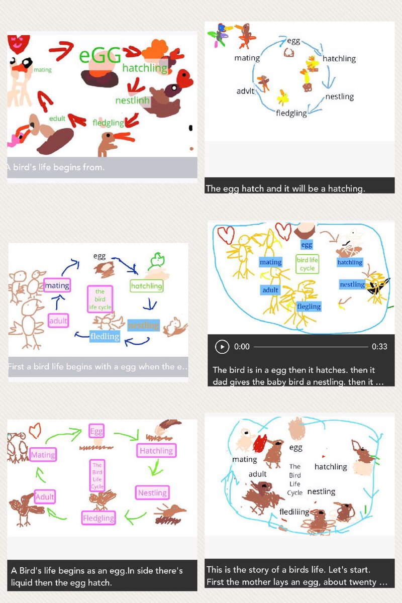bird life cycle diagram uverse outside wiring sciencerocks on twitter the year 2 s made some awesome diagrams and shared story of a in seesaw today