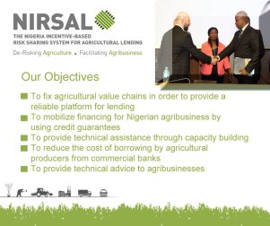 Image result for NIRSAL