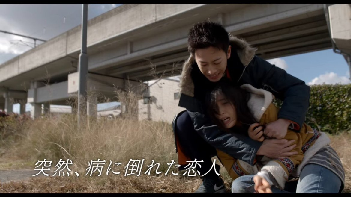 live action, review, 8 nen goshi no hanayome