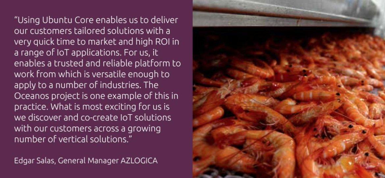 .@AZLOGICA increased shrimp🦐 production using Ubuntu Core #IoT. Get the full story!