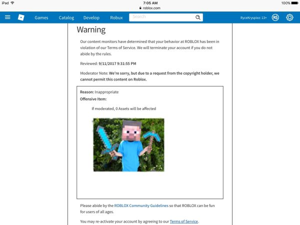 20 Weird Roblox Bans Pictures And Ideas On Meta Networks