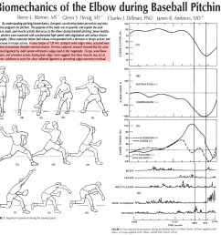 brent pourciau on twitter study 82mph fastball 120nm of varus torque on elbow which tore ucl of cadaver flexor mass and tricep muscles helped prevent  [ 1200 x 1200 Pixel ]