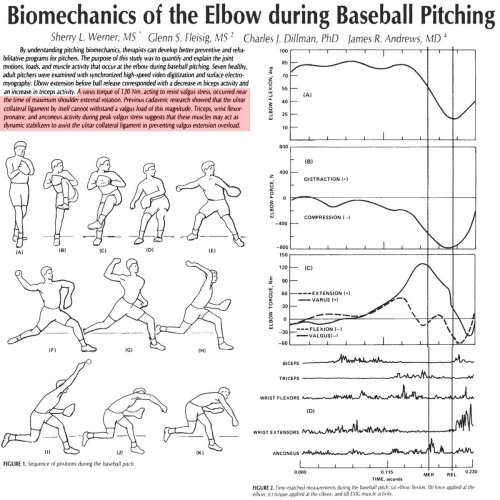 small resolution of brent pourciau on twitter study 82mph fastball 120nm of varus torque on elbow which tore ucl of cadaver flexor mass and tricep muscles helped prevent