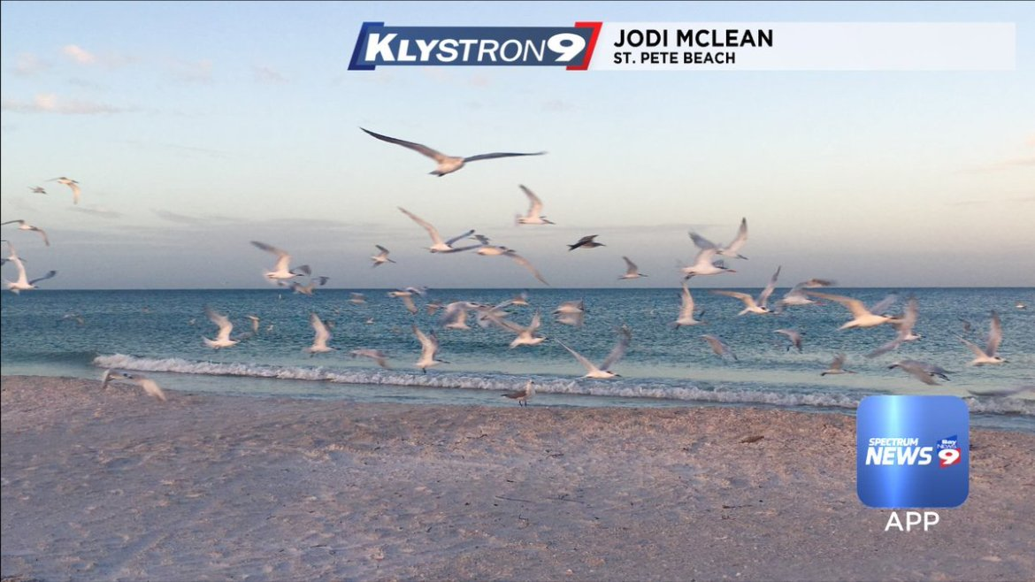 Juli Marquez: It stays breezy this week. Rain chances will increase Thursday and Friday.