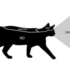 cats are assholes [ 1200 x 783 Pixel ]