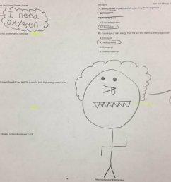 34 Nutrition Label Worksheet Answer Key Quizlet - Labels Database 2020 [ 730 x 1200 Pixel ]